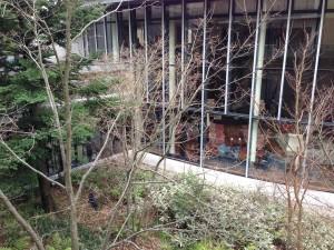 ハイアットリージェンシー箱根の中庭側からリビングルームを眺めるとこんな感じです。