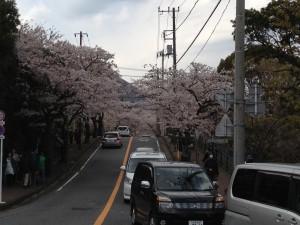 130407_08_onsen01