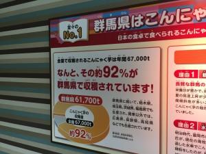 こんにゃくパーク。工場のパネル展示で、群馬県が日本中の92%のこんにゃくいもを収穫しているという、衝撃の事実を突然告げられます。