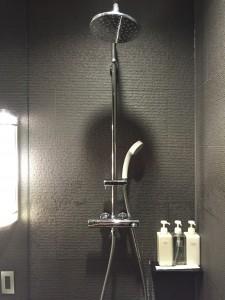 シャワーはハンドシャワーとレインシャワーの二つがあります。嬉しがってレインシャワーを使ってしまうのは仕方ありません。