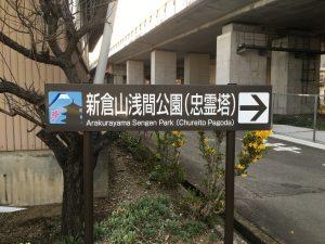 山梨の桜の名所を探して辿り着いた新倉山浅間公園。