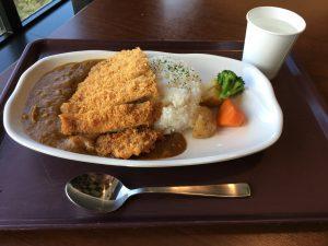 決勝レース前にレストランORIZURUでカツカレーを食べました。その間も別のレースが行われていて、ご飯を食べながらでもレース観戦ができる。